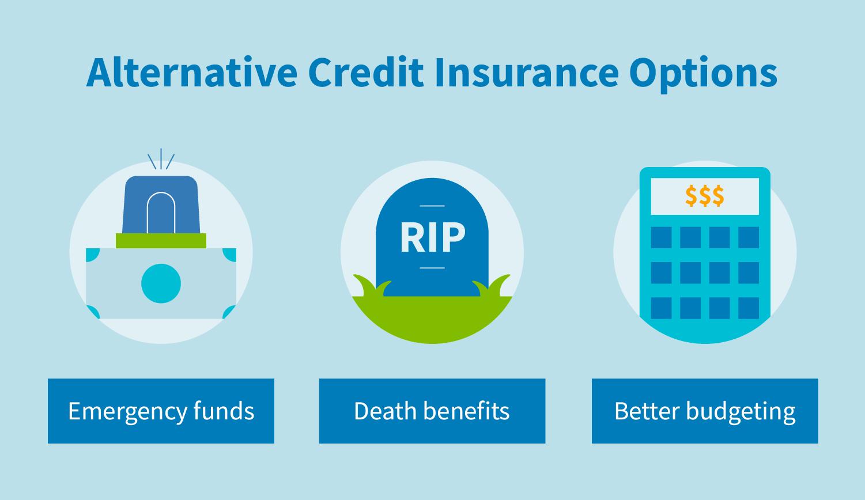 Alternative credit insurance options