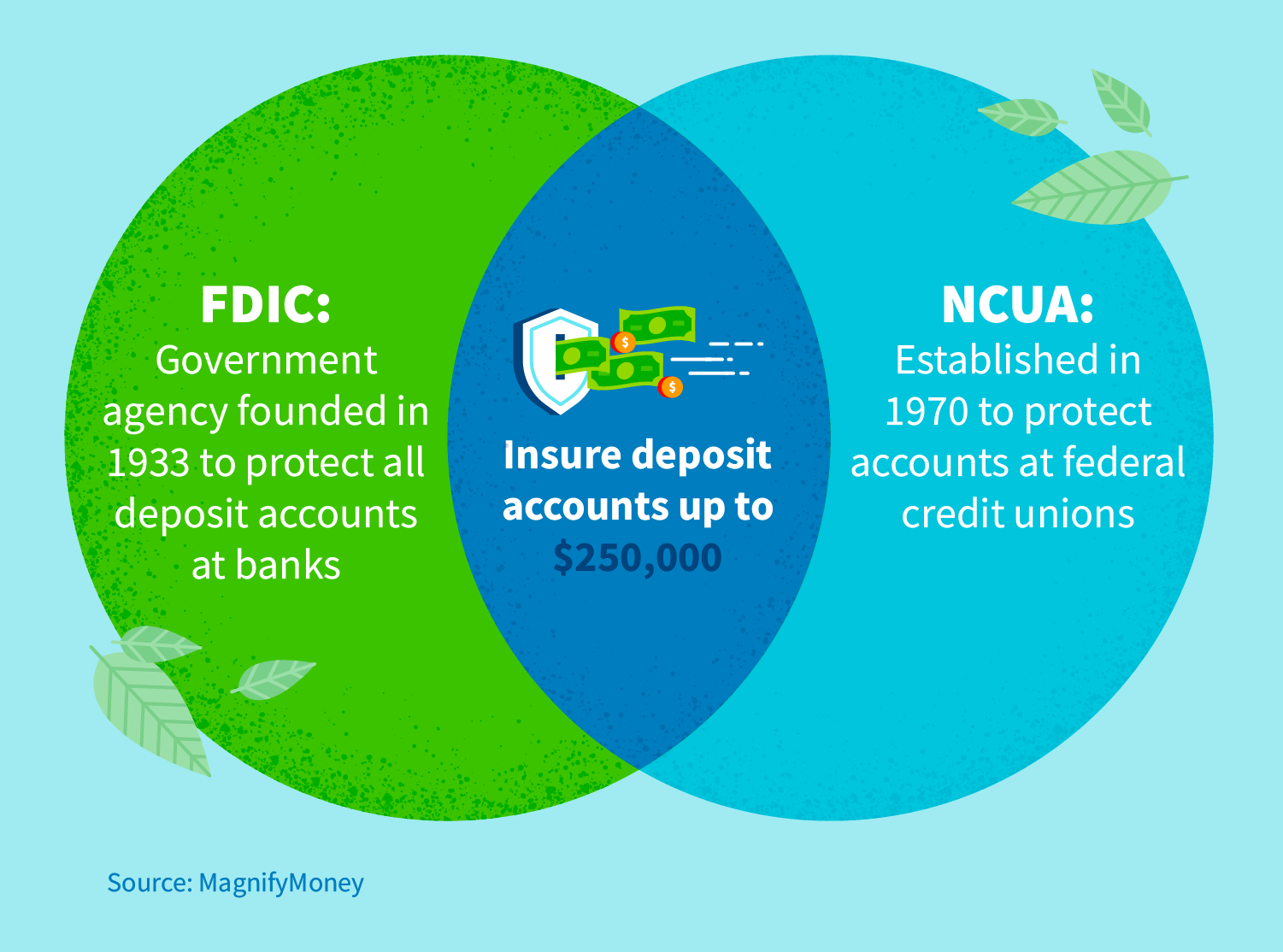 FDIC: Government agency founded in 1933 to protect all deposit accounts at banks. NCUA: Established in 1970 to protect accounts at federal credit unions.